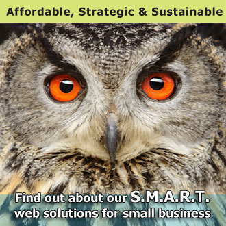 SMART web solutions